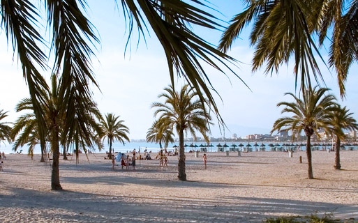 playa de palma airport transfer